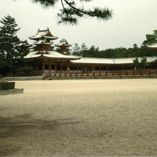 Temple grounds