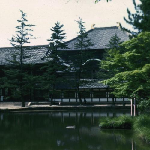 Nara pond