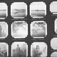 Gilbert T. Tanji album page 29. Tilda Basin, March 25, 1945