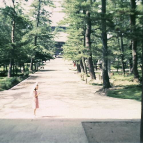 Woman with umbrella at Nara