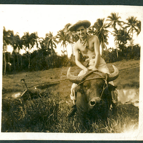 Man riding a buffalo